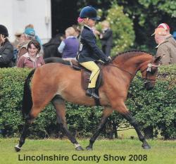 Lincolnshire 2008
